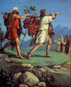 Изображение для главы: Соглядатаи в Ханаане